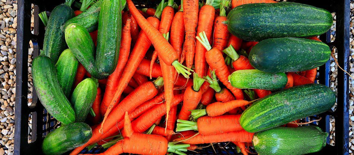 vegetables-5297337_1920